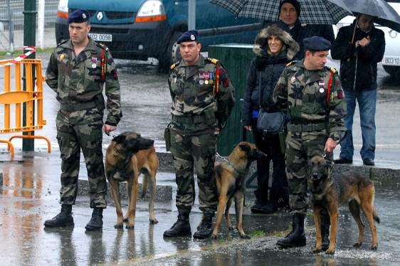fusilier marins maitre chien - Fusiliers marins - Forum
