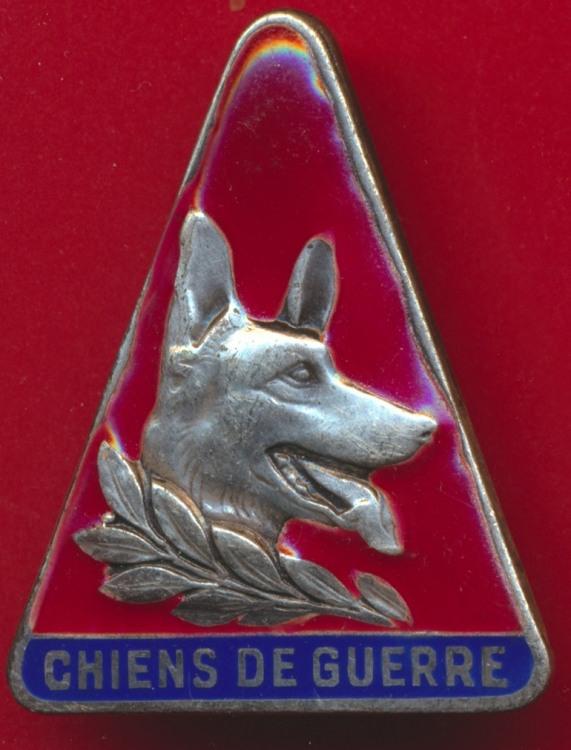 insigne-maitre-chien-guerre.jpg